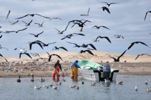 pescadores-1320x880