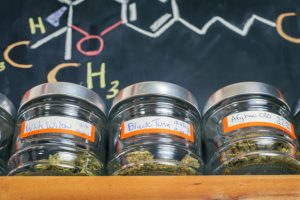 Medical marijuana jars against board with THC formula - cannabis dispensary background